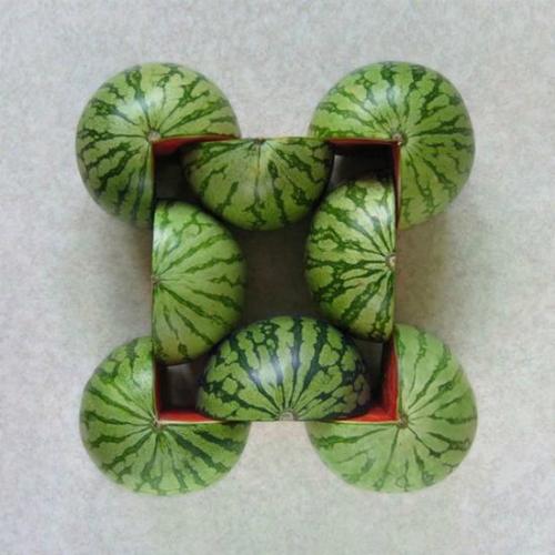 Làm sao để đựng 10 quả dưa hấu trong 11 giỏ, mỗi giỏ một quả?