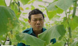 Vườn rau quý hơn kho báu của lão nông Hà Tĩnh