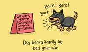 Trắc nghiệm ngữ pháp dễ nhầm lẫn trong tiếng Anh
