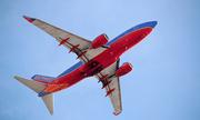 Máy bay của Southwest Airlines lại va phải chim