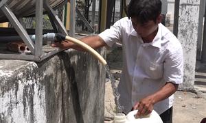 Nắng nóng kéo dài, giếng nước ở Ninh Thuận trơ đáy