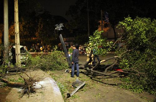 Cây xanh cùng trụ điện bị tông ngã tại hiện trường. Ảnh: Sơn Hòa