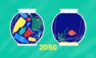 Rác thải nhựa dưới biển có thể nhiều hơn cá vào năm 2050