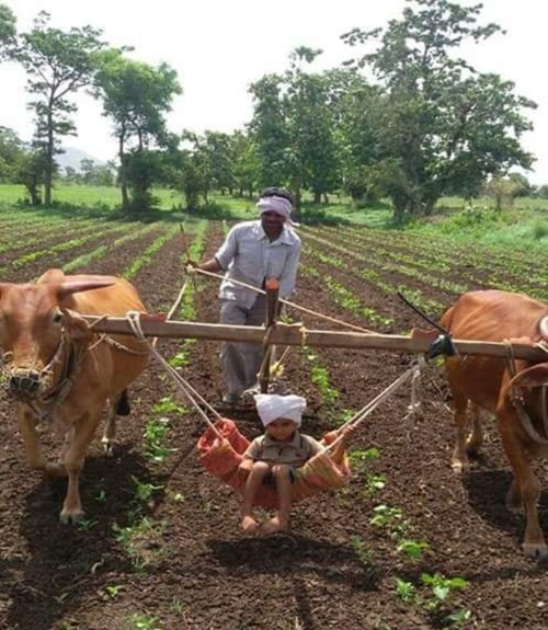 Niềm vui của những đứa trẻ nhà nông.