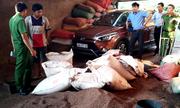 Thu giữ 3 tấn phế phẩm cà phê được bán về Bình Phước