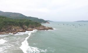 Vịnh Xuân Đài được quy hoạch thành khu du lịch quốc gia