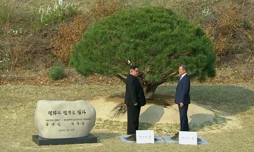 Lãnh đạo hai miền Triều Tiên sau lễ trồng cây. Ảnh: Reuters.