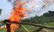 Tẹc dầu ở Hà Tĩnh rò rỉ vào nước giếng của nhiều hộ dân