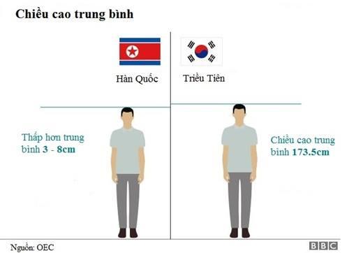 So sánh chiều cao trung bình của người Hàn Quốc và Triều Tiên. Đồ họa: BBC.