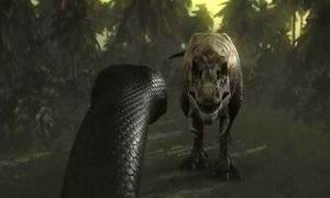 Mãng xà nặng hơn một tấn tử chiến với khủng long bạo chúa