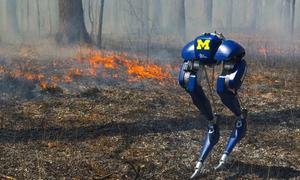 Robot cứu hỏa hai chân đi bộ qua lửa