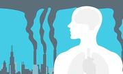 Ô nhiễm không khí tác động tới cơ thể như thế nào?