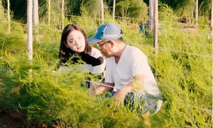Nông dân Ninh Thuận thoát nghèo nhờ trồng măng tây