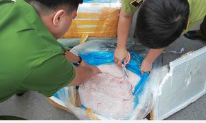 Công an Hà Nội thu 11 tấn nội tạng trên đường vào miền Nam