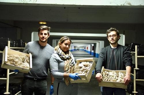 Đội ngũ nông dân trồng nấm của La Caverne.