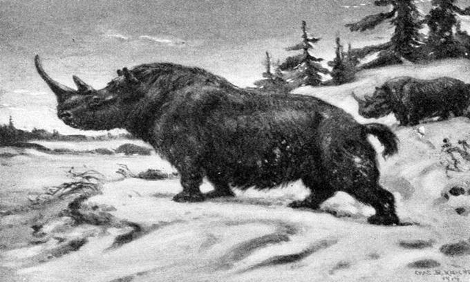 10 động vật tuyệt chủng có thể được hồi sinh
