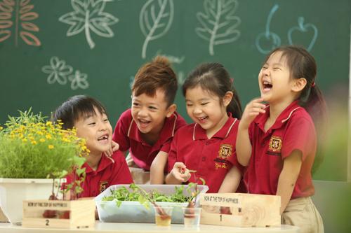 Mỗi năm Hệ thống Trường Quốc tế Việt Úc (VAS) thu hút hơn 2.000 học sinh tham gia trại hè