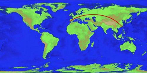 Trên ảnh là tuyến đường bộ dài nhất thế giới, theoChabukswar và Mukherjee. Ảnh: Amusing Planet.