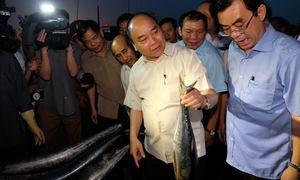Thủ tướng mua cá, tặng quà cho ngư dân Quảng Trị