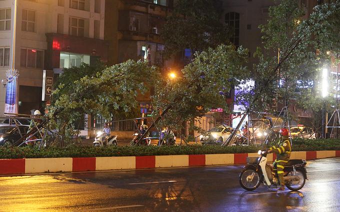 Mưa giông quật đổ nhiều cây xanh ở Hà Nội
