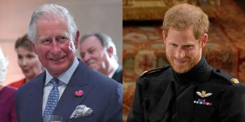 Thái tử Charles và Hoàng tử Harry. Ảnh: AFP.