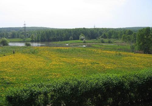 Công viên thiên nhiên Bitsa.