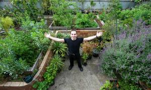 Mảnh vườn cung cấp 240 kg rau quả cho gia chủ người Australia