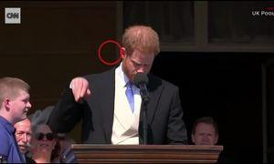 Con ong quấy rối Hoàng tử Harry khiến Meghan bật cười