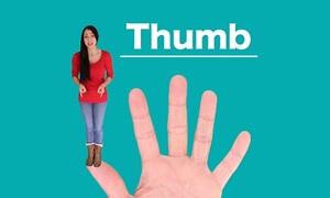 Tên gọi các ngón tay trong tiếng Anh