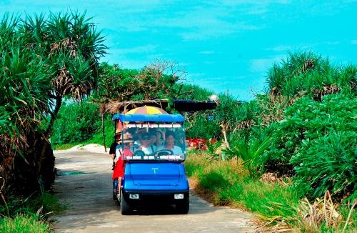 Người dân Lý Sơn lái xe điện bốn bánh đưa du khách tham quan. Ảnh: Phạm Linh.