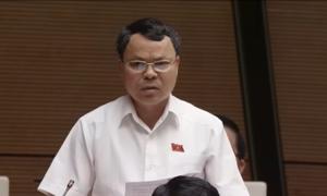 Đại biểu Quốc hội tranh luận về vụ án bác sĩ Hoàng Công Lương