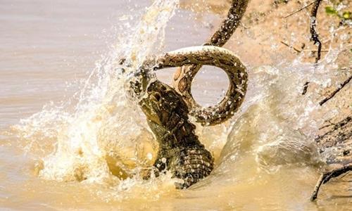 Trận đấu dữ dội khiến nước văng tung tóe. Ảnh:Rishani Gunasinghe.
