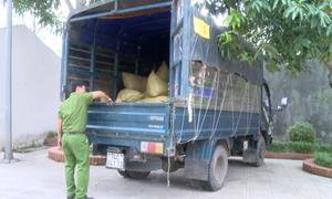 Hơn 600 kg pháo ngụy trang trong xe chở hoa quả ở Nghệ An