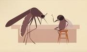 Chiến thuật sinh tồn giúp côn trùng áp đảo mọi loài về số lượng