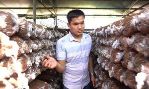 Chàng trai Sài Gòn thu trăm triệu mỗi tháng nhờ trồng nấm