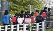 Nạn bạo hành trẻ em trong các gia đình Nhật