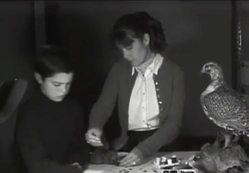 Cảnh mô phỏng tuổi thơ với công việc ám ảnh.