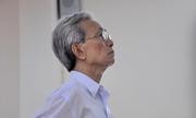 Án treo bị huỷ, Nguyễn Khắc Thủy lĩnh 3 năm tù