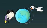 Những yếu tố giúp chim di cư định hướng