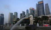 Sự vắng bóng của cộng đồng người Triều Tiên tại Singapore