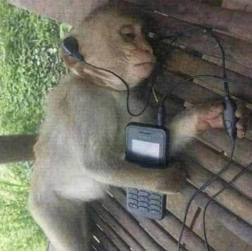 Khi bạn nghe nhạc buồn lúc thất tình.