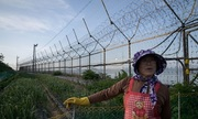 Hy vọng của người sống ở biên giới liên Triều về hội nghị Trump - Kim