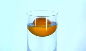Tại sao quả cam không chìm trong nước?