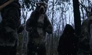 Hai quái vật cổ đại có thể từng chạm trán người châu Mỹ