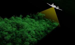 NASA nghiên cứu ảnh hưởng của hạn hán đến rừng mưa Amazon