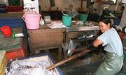 Đánh bắt mực - ngành Trung Quốc dùng để hiện thực hóa tham vọng biển