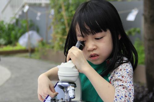 Học sinh tham gia ngày hội STEAM ở một trường quốc tế tại Hà Nội. Ảnh: Dương Tâm