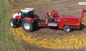 Cỗ máy giúp nhặt hạt bí trên cánh đồng khổng lồ