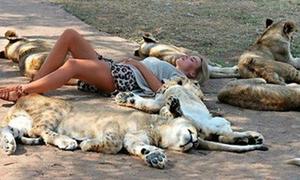 Những tư thế ngủ 'kinh điển' nơi công cộng của phái đẹp