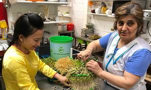 Tiến sĩ trẻ người Việt sang Nga tiếp thị máy làm giá đỗ